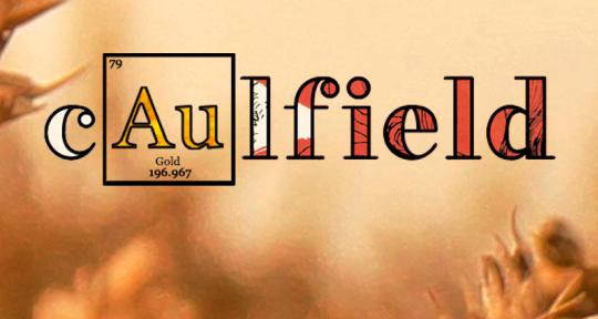 Singer (Male) & Songwriter  - cAulfield