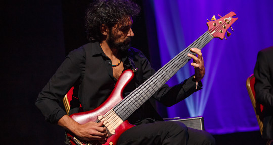 Flamenco bassist for recording - Sergio Di Finizio