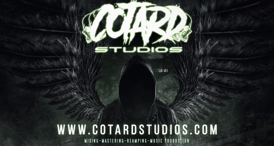 Music Producer - Cotardstudios