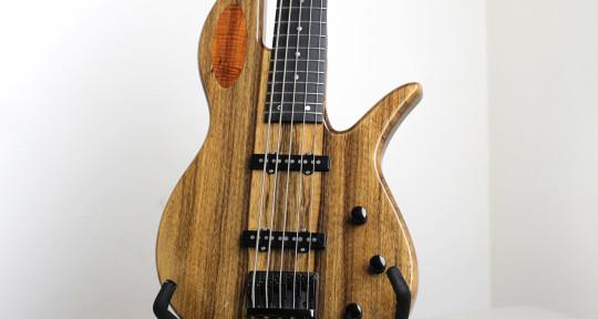 Bass-Electric/Fretless/Upright - Trifon