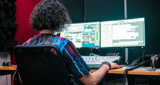 Remote Mixing and Mastering  - Sebastian Gulino