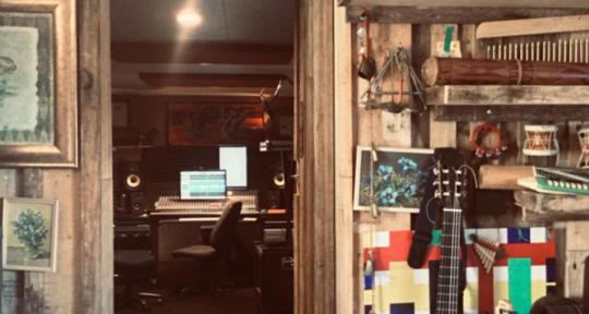 Mix and Master Engineer - Swampshack Studio