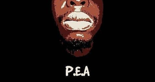 Singer-Songwriter - P.E.A