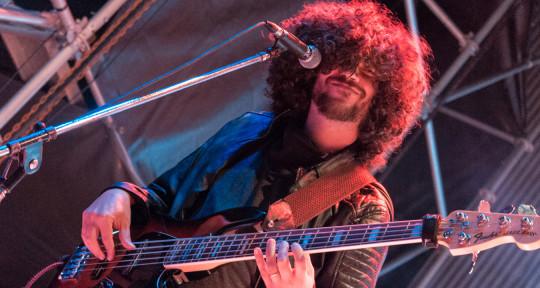 Upright Bass & Electric Bass  - Federico Martin Palmolella