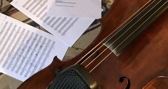Session cellist & arranger - Emily Burridge