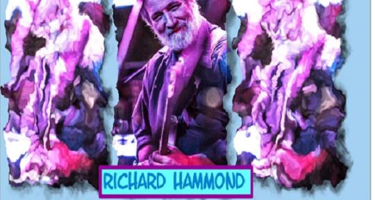 Fancy acoustic guitar  - Richard Hammond