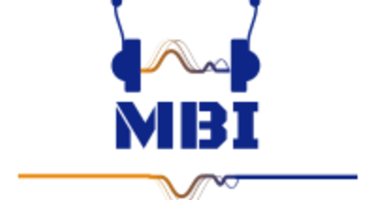 Producer Guitarist Songwriter - MBI
