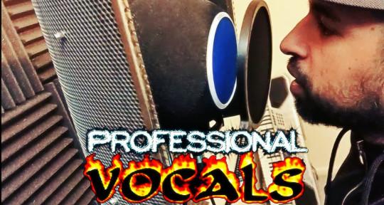 Rap/reggae pro studio vocals - Lyrikal Master MuziK