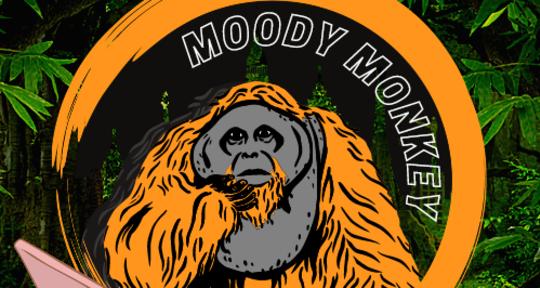 Producer, Arranger, Mixer - MoodyMonkey