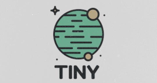 songwriter, producer, singing - TINYbeats