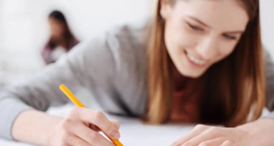 Thesis Writing Service - Thesis Writing Service
