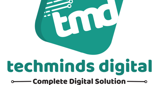 Digital Marketing - TECHMINDS DIGITAL