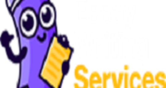 Blogging - Essay Writing Services PK