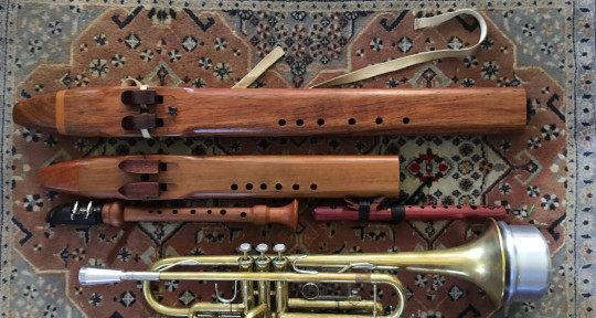 Session multi-instrumentalist - Haitch Music