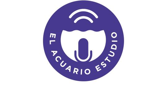 Remote Mixing & Mastering  - El Acuario Estudio