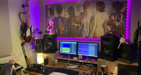 Mixing and Mastering  - Pink Flamingo Music Production