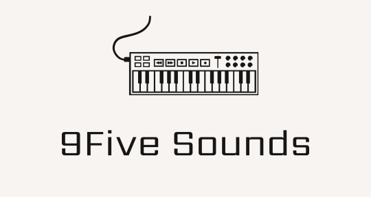 Remote Producer and Mixer - 9Five Sounds