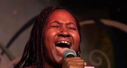 Professional Singer/Songwriter - Soul Kitten