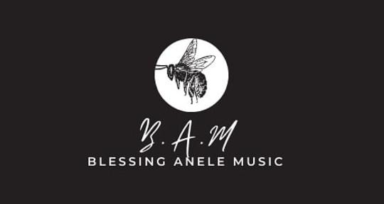 Session guitarist ,vocalist .  - B. A .M