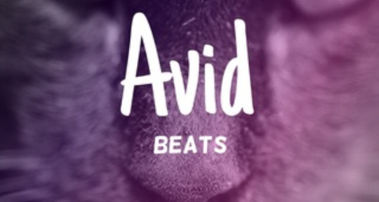 Music Producer, Mixing + more! - Avid Beats