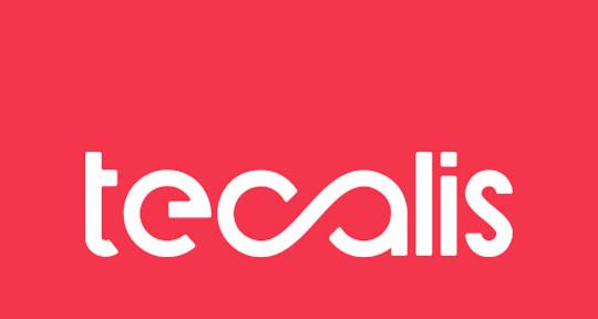 Ayudamos a impulsar tu negocio - Tecalis