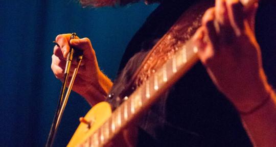 Session bassist & mix engineer - Jesse Holsapple