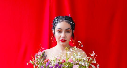 Singer, songwriter, violinist - Amanda Tovalin