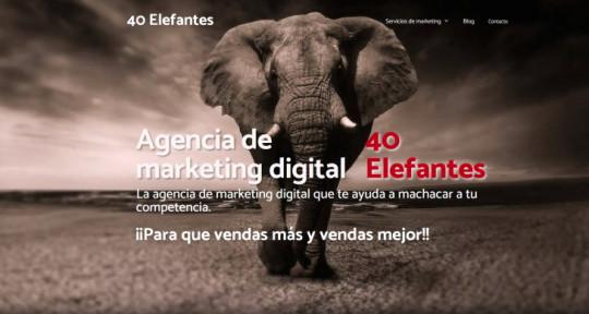 Cuarenta Elefantes - Cuarenta Elefantes