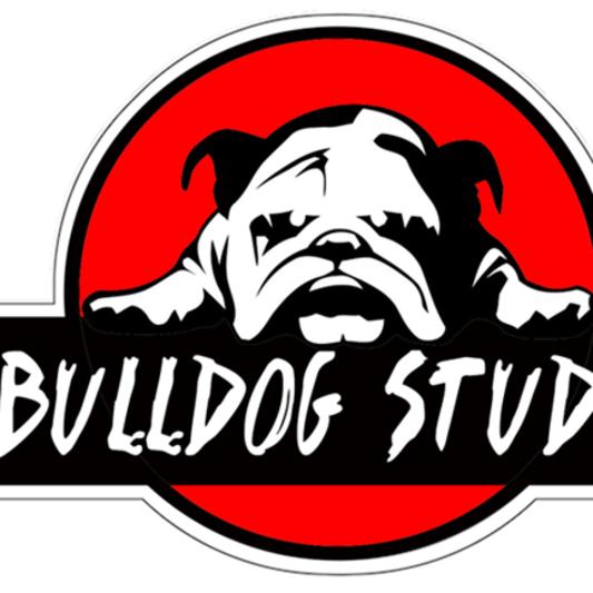 Bulldog Studio on SoundBetter