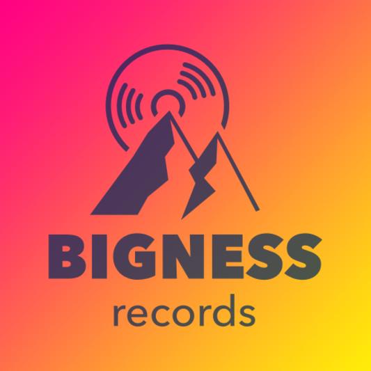 Bigness Records on SoundBetter