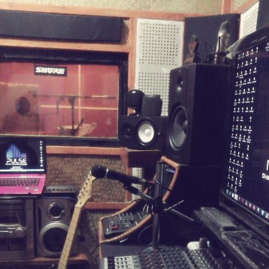 Pulse Digital Recording Studio on SoundBetter