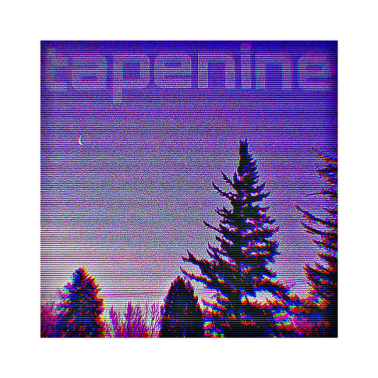 tapenine on SoundBetter