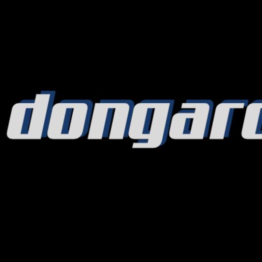 dongarcez on SoundBetter