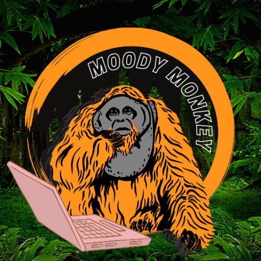 MoodyMonkey on SoundBetter