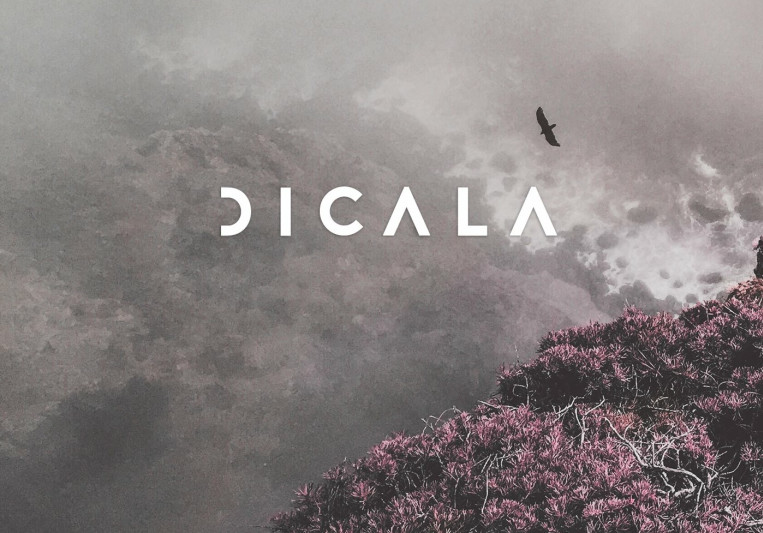 Dicala on SoundBetter