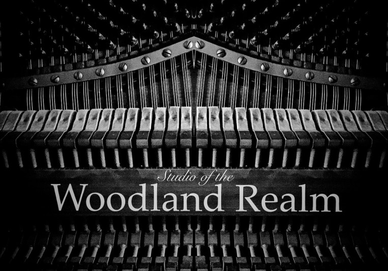 Studio of the Woodland Realm on SoundBetter