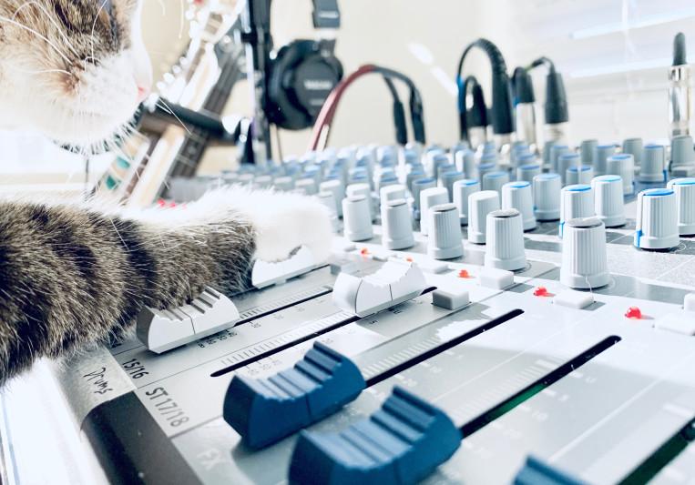 Fat Cat Mixing on SoundBetter