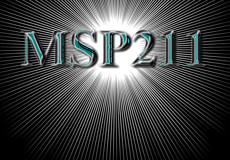 MSP 211 on SoundBetter