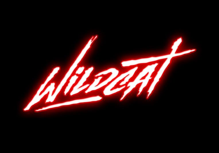 wildcat808 on SoundBetter