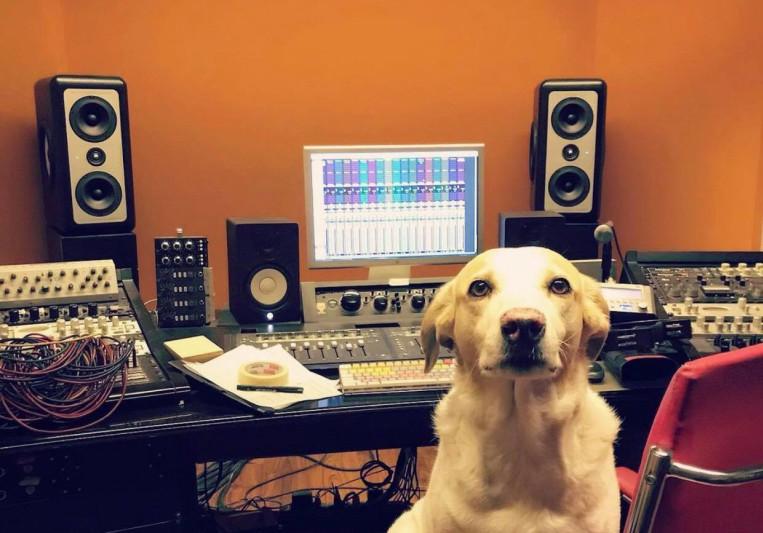 Alvarez Cedro on SoundBetter