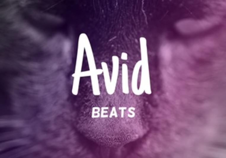Avid Beats on SoundBetter