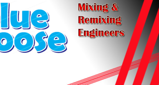 Photo of Blue Moose Mixing & Remixing