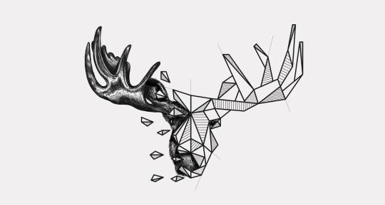 Photo of Moose Delusion Audio