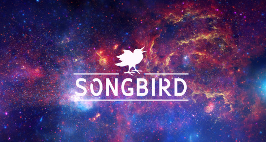 Photo of SONGBIRD™ Recording Studio