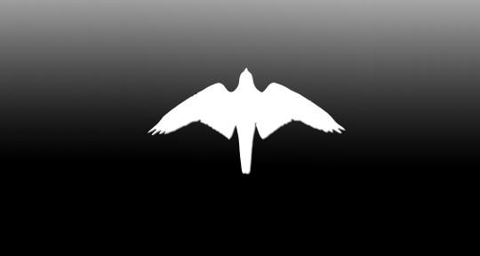 Photo of Falcon Audio