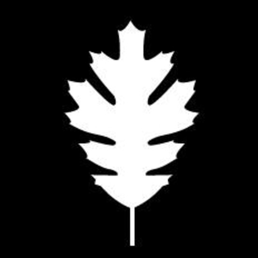 WhiteLeafMusic on SoundBetter