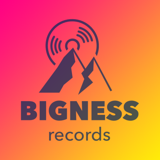 Bigness Records on SoundBetter