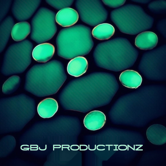 GBJ PRODUCTIONZ on SoundBetter