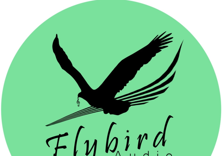 Flybird Audio Production on SoundBetter
