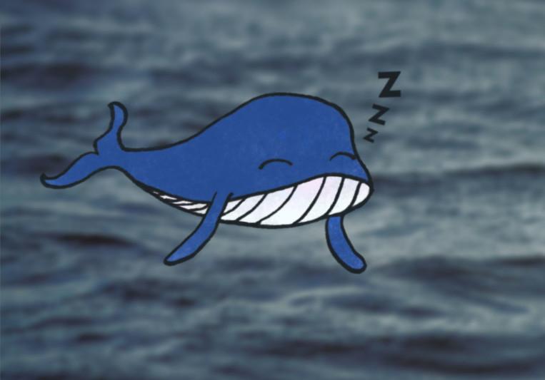 Lazy Whale on SoundBetter